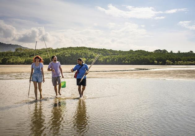 1 Day Daintree Dreaming with Rainforest Walk