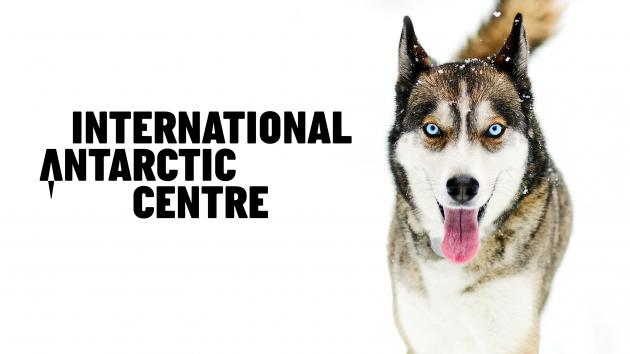 International Antarctic Centre: General Admission