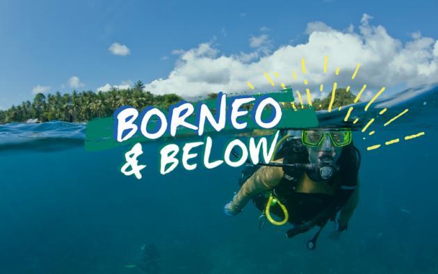 BORNEO & BELOW