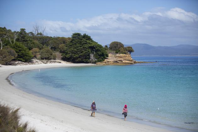 Maria Island Highlights: Active full day tour