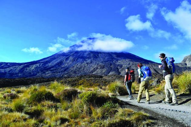 Adrif Tongariro - Half Day Volcanic Explorer