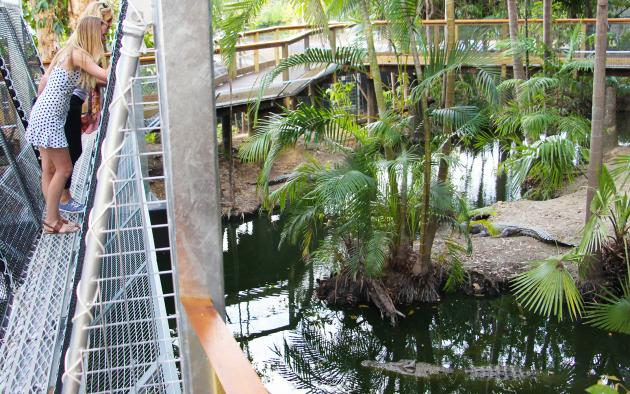 Due to COVID-19 Wildlife Habitat Port Douglas is experiencing closures tentatively until May 31 - Wildlife Habitat: Entry