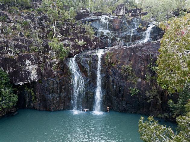 Rainforests & Waterfalls - Guided walking tour of Conway National Park & Cedar Creek Falls