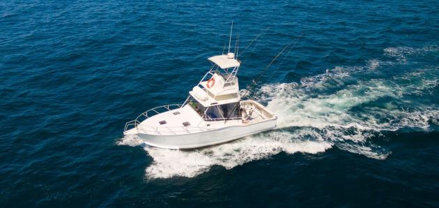 Full Day Outer Island & Shoal Fishing Charter - Shared